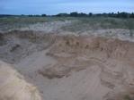 Норки в песке
