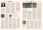 Единственный выпуск FC Times (3-4 странница)