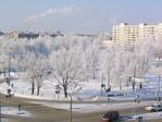 Зимой весь город замирает в снежной красоте